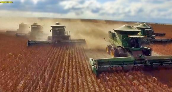 O agronegócio brasileiro bate recorde de receita: US$ 10,90 bilhões